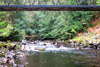 novar fishings, river alness, beat 4, wagtail thumbnail