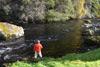 novar fishings, river alness, beat 5, dalbreak  thumbnail