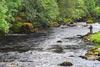 novar fishings, river alness, beat 5, dalneich falls thumbnail