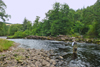 novar fishings, river alness, beat 5, island pool thumbnail