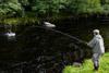novar fishings, river alness, beat 5, mrs perrins thumbnail