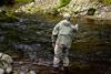 novar fishings, river alness, beat 5, richard's dub thumbnail
