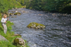 novar fishings, river alness, beat 6, chamberlain's pool thumbnail