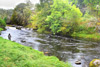 novar fishings, river alness, beat 6, miller's pool thumbnail