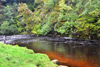 novar fishings, river alness, beat 6, pool na poach thumbnail