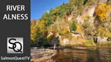 autumn gold video