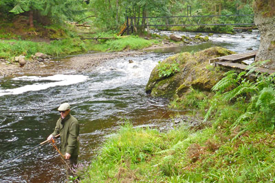 novar fishings, river alness, beat 4 wagtail bridge