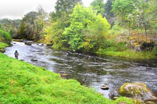 novar fishings, river alness, beat 6 miller's pool
