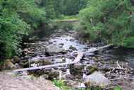 novar fishings, river alness, beat 4 holly temporary bridge