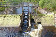novar fishings, river alness, loch morie dam