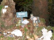 Welcome to the Fairy Glen