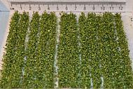 10cm Leafy Strips - Self Adhesive (TM7)