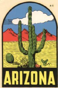Desert & Cactus