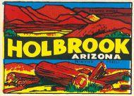 Holbrook and petrified logs