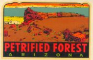 Petrified Forest Old Faithful Log