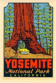 Yosemite National Park Wawona
