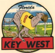 Key West, Racing Dog