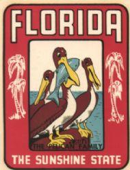 Florida, Pelican Family