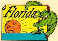 Florida, Alligator in the Sunshine