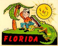 Florida, Man and Alligator