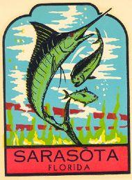 Sarasota, Marlin