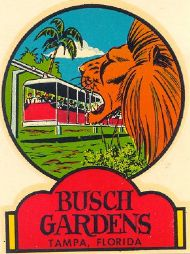 Tampa, Busch Gardens , Lion & Trolley