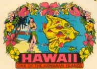 State Map Hawaii Island