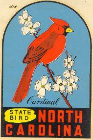 Statebird, Cardinal