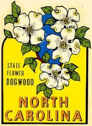 State Flower, Dogwood