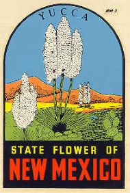 State Flower Yucca