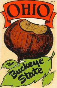 Buckeye State with chestnut