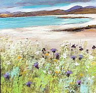 Northern Shore and Machair