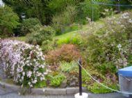 Heronfield Front Garden Summer Shrubs