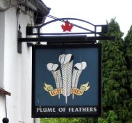 Plume of Feathers,