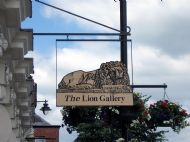 Lion Gallery