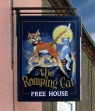 Romping Cat.