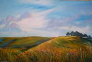 Wiltshire Downs with poppies