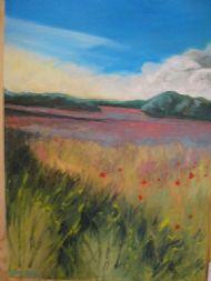 Poppies and borage at Vernham Dean