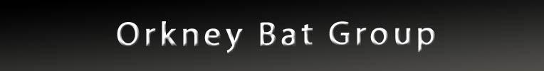 Orkney Bat Group