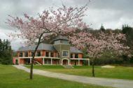 Woodenbridge Clubhouse
