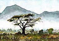 Impression of Malawi