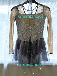 Moonlight Fairy Ice Skating Dress