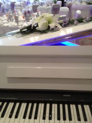 Our new portable grand piano