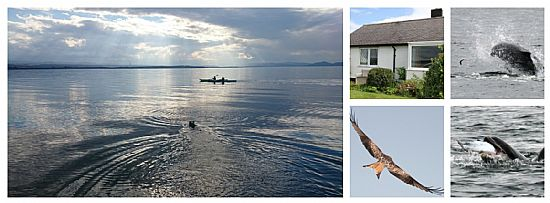 dolphin view cottage sea view of moray firth