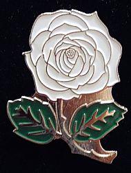D3 WHITE ROSE ENAMEL BADGE