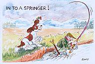 Into a Springer!