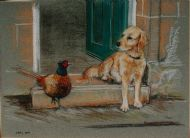 Retriever and Pheasant