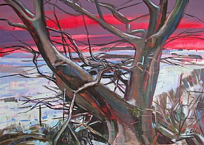 winter tree west lingo vibrant sky and landscape, alan watson artist, 2014 all rights reserved