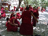 The 'Debating' Monks