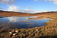 Loch Meodal on the Ord Tarskavaig road